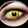 Yellow ( 2 lenses )