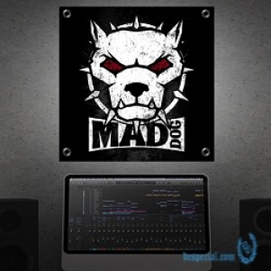 DJ Mad Dog Banner 'Mad Dog'