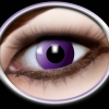 Purple ( 2 lenses )