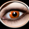 Orange ( 2 lenses )