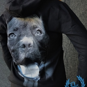 Pit Bull Westcoast Ladies Hooded Sweater 'IR'