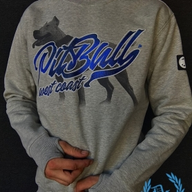 Pitbull West Coast Sweater 'Red Nose II Grey'