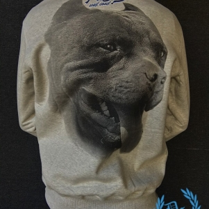 Pit Bull Westcoast Sweater 'Red Nose II Grey'