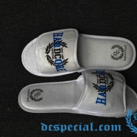 DC's Special Slippers 'Anno'