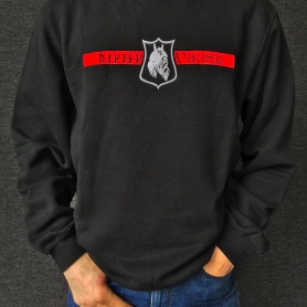Thor Steinar Sweater 'Viking Rüne'